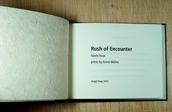 artist's book encounter