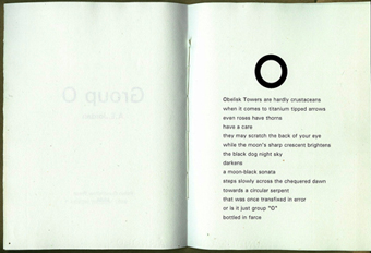 artist's book group O